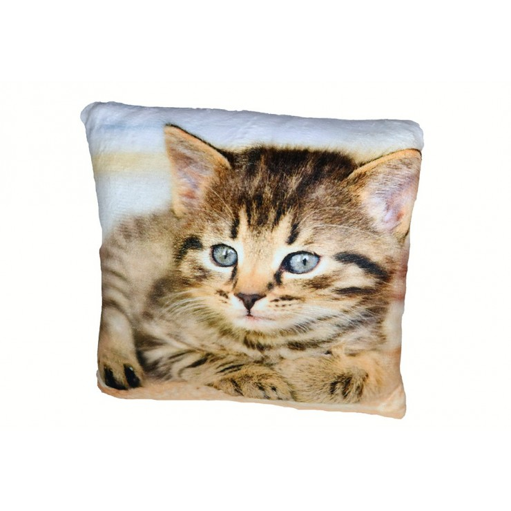 Insulated pillow Cat 40x40 cm