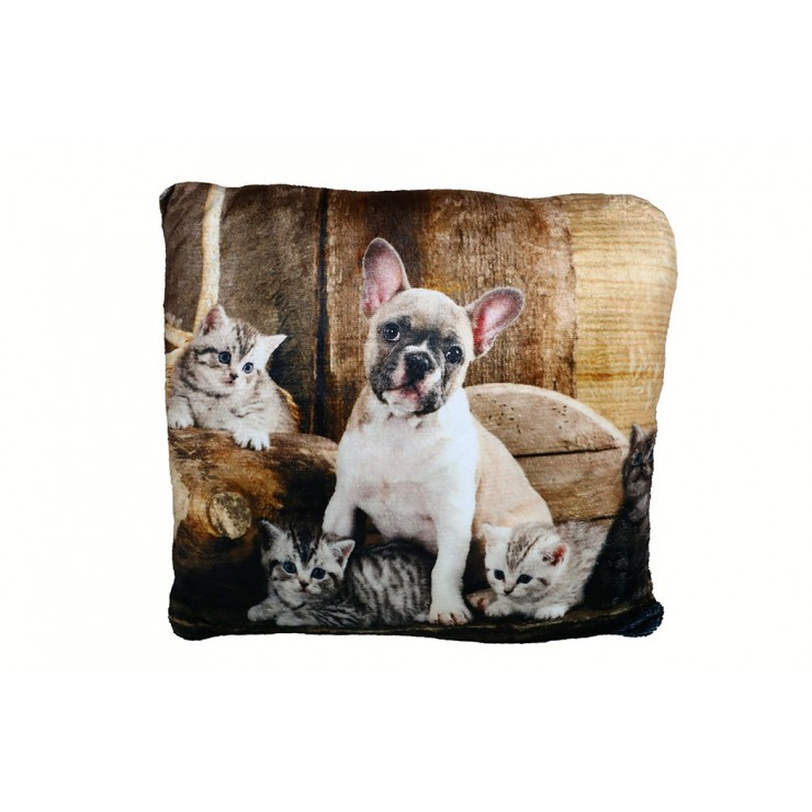 Insulated pillow Bulldog and Cats 40x40 cm